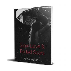 Slow Love and Faded Scars book cover
